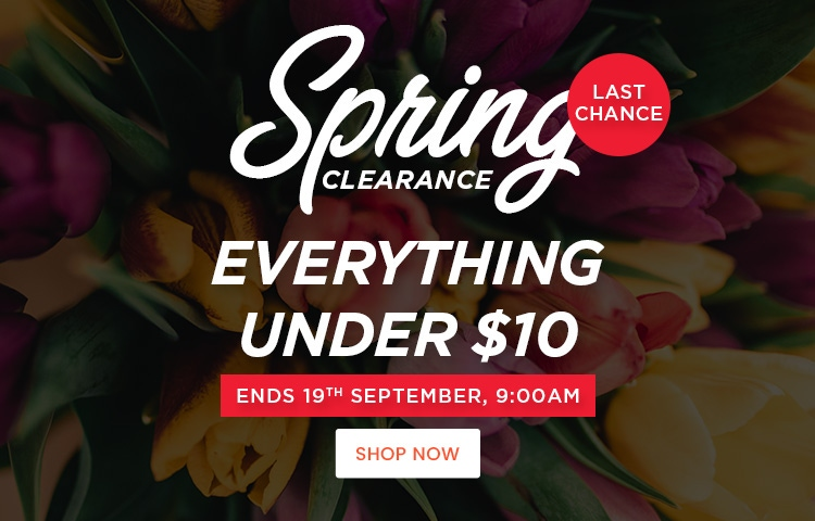 Spring Clearance Sale - Professional Hair & Beauty products - everything under $10 - Only at Catwalk Australia